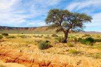 Namibia-Komsberg-14